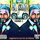Life of S.Peezy by Peezy
