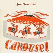 Carousel by Joe Newman