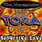 Seductive Love von Various Artists