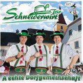 A echte Dorfgemeinschaft de Schneiderwirt Trio