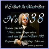 Cantata No. 102, 'Herr, deine Augen sehen nach dem Glauben'', BWV 102 von Shinji Ishihara