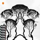 YOU (HiitmonDre Remix) de Mr.A The Martian
