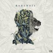 Na're by Beni