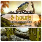 50 Nature Sounds: 3 Hours Relaxing Instrumental Music for Welness Spa & Massage by Dominika Jurczuk Gondek