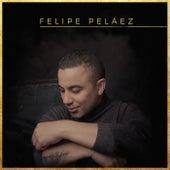 Fue un Amor de Verdad de Felipe Peláez (Pipe Peláez)