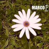 Marco P by Marco P
