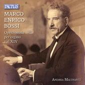 Bossi: Complete Organ Works, Vol. 14 - Transcriptions de Andrea Macinanti