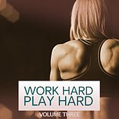 Work Hard Play Hard, Vol. 3 (Work Like A Boss, Party Like A Rockstar. Finest In Modern Big Room And Electro House) de Various Artists