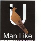 U (Man Like) de Bon Iver