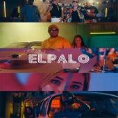 El Palo by Fredyclan