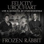 Frozen Rabbit (Live @ Studio Goonga) von Felicity Urquhart
