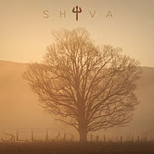 Seeds (Instrumentals) by Shiva