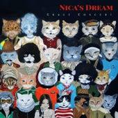 Nica´s Dream by Grace Cosceri
