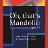 Oh, That's Mandolin Vol. 2 de Detlef Tewes Mandolin