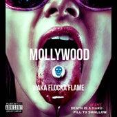 Mollywood von Waka Flocka Flame