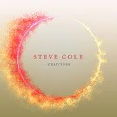 Gratitude by Steve Cole