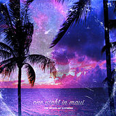 One Night In Maui by DJ.Fresh