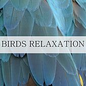 Birds Relaxation by Nature Sounds (1)