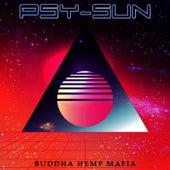 Minimal Tech von Psysun