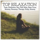 Top Relaxation: Yoga, Meditation, Zen, Chill, Baby, Sleep, Focus, Serenity, Harmony, Therapy, Study, Serenity by Various Artists
