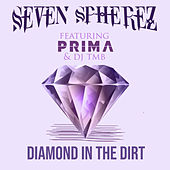 Diamond in the Dirt von Seven Spherez
