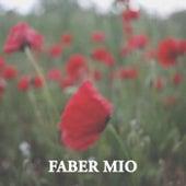 Faber Mio de Cantautore Misterioso