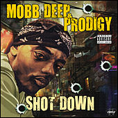 Shot Down de Various Artists
