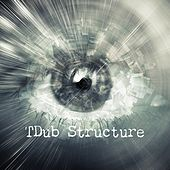 Tdub Structure by Various Artists