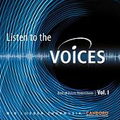 Listen To The Voices by Voices Rödersheim