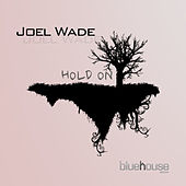 Hold On de Joel Wade