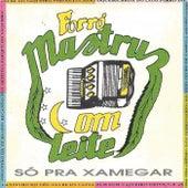 Só pra Xamegar by Mastruz Com Leite