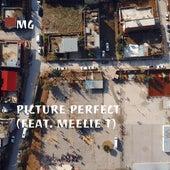 Picture Perfect (feat. Meelie T) de Martin Gore