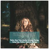 Music for Relaxation, Babies, Sleep, Focus, Serenity, Harmony, Therapy, Study, Yoga, Ballads, Happiness, Therapy by Various Artists