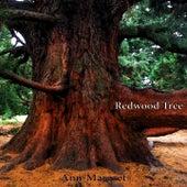 Redwood Tree by Ann-Margret