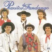 Alma de Campo by Piazitos do Fandango