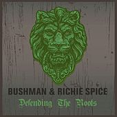 Defending The Roots Bushman & Richie Spice by Various Artists