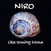 Like Coming Home by Niro