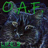 Life 9 by Oaf