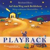 Auf dem Weg nach Bethlehem (Playback) von Reinhard Horn
