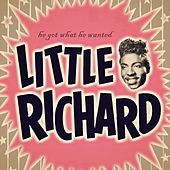He Got What He Wanted by Little Richard
