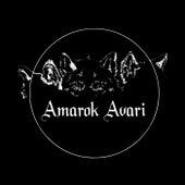 Amarok Avari von Amarok Avari