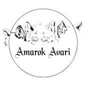 Amarok Avari (Demo) von Amarok Avari