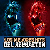 Los Mejores Hits del Reggaeton by Various Artists