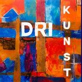 Kunst de D.R.I.