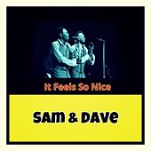 It Feels so Nice de Sam and Dave