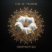 Indestructible by Flor de Toloache