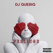Feelings by DJ Quebiq