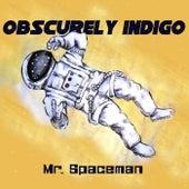 Mr. Spaceman (feat. Lindiwe Msweli) von Obscurely Indigo