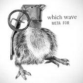 Meta For von Which Wave