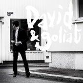 David & Goliat von David